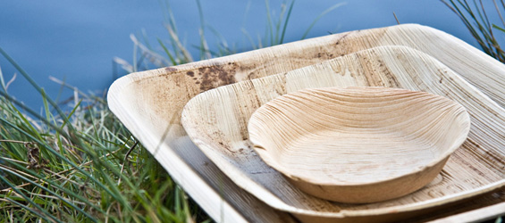 Outstanding Rustic Disposable Plates Ideas - Best Image Engine ... Outstanding Rustic Disposable Plates Ideas Best Image Engine & Outstanding Rustic Disposable Plates Ideas - Best Image Engine ...